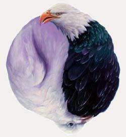 sm_EagleDove-1
