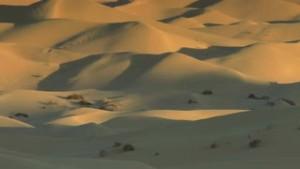 dunes-004-zoom-out-on-mounds-of-sand-dunes_nydus68b__S0000